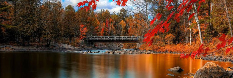 autumn scene of a bridge over river in Andover Township